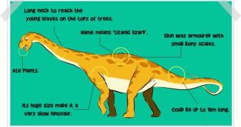 Titanosaur decription